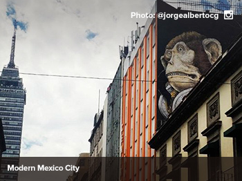 Mexico City's Arts Scene