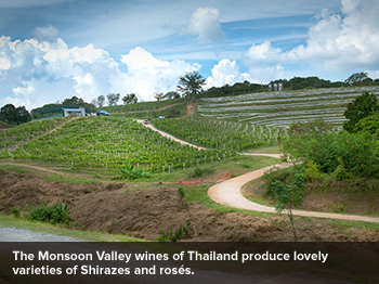 Monsoon Valley wines